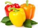 Ini 6 Makanan untuk Kulit Sehat Berseri